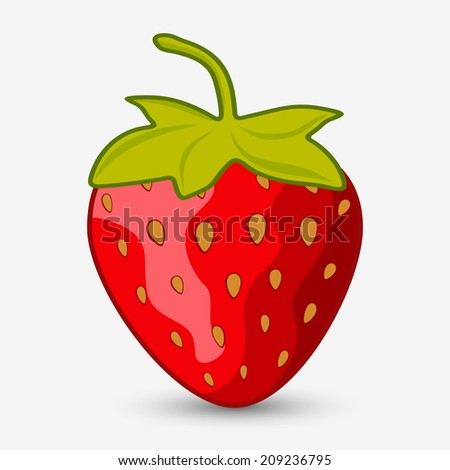 Ripe strawberries on a white background with shadow - stock vector