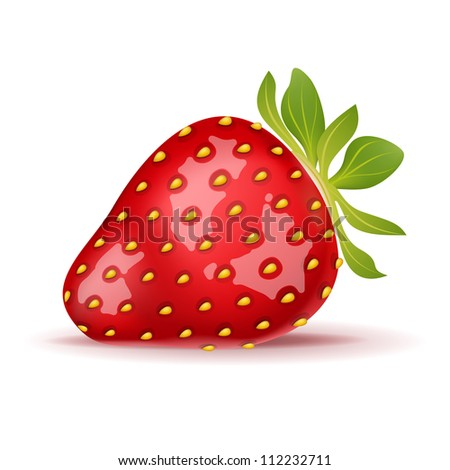 Ripe strawberry isolated on white. Vector illustration - stock vector