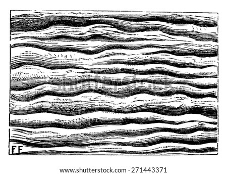 Ripples left by water and petrified, vintage engraved illustration. Earth before man - 1886. - stock vector