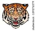 Roaring tiger's head isolated on white. Color vector illustration - stock vector