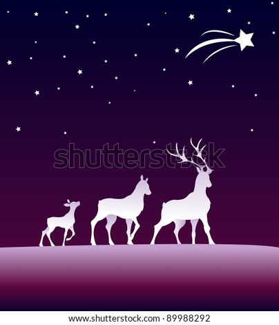 roes under the starsky - stock vector