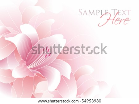 Romantic background with pink lily and copy space, vector illustration - stock vector