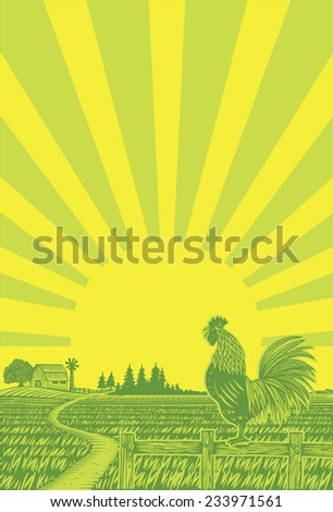 Rooster crowing at rice field in the morning with sun rising background in woodcut style - stock vector