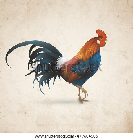 Rooster on Old Paper texture. Chinese Zodiac Sign - Vintage Card. Vector illustration
