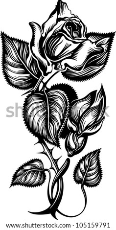 Rose engrawing picture. Vector illustration - stock vector
