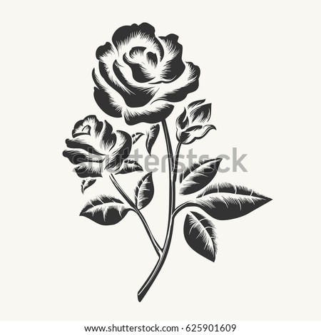 Rose Tattoo Stock Images Royalty Free Images Vectors Shutterstock