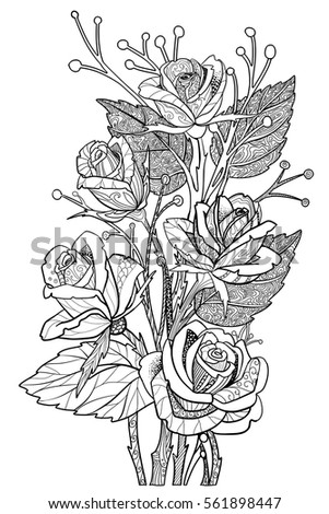 Rose Flowers Coloring Book Page Floral Decorative Doodle Roses Isolated On White