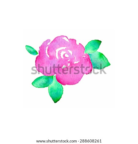 Rose. Hand-drawn flower.  Real watercolor drawing. Vector illustration. Traced painting - stock vector