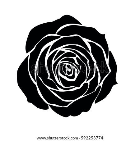 Rose vector stock vector 592253774 shutterstock rose vector voltagebd Gallery