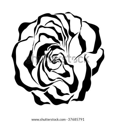 Rose. Vector illustration. - stock vector