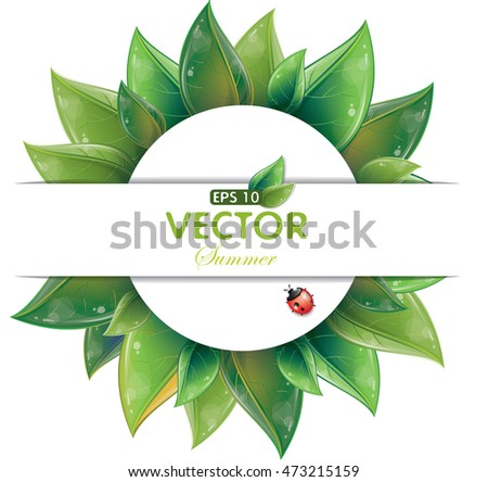 Round design of green leaves with ladybug isolated on white, vector illustration, eps-10