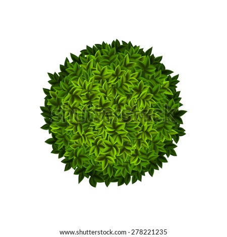 Round green bush with leaves. Vector Image. - stock vector