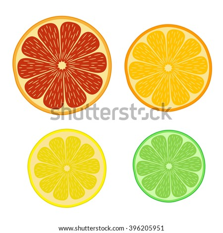Round slices of citrus. Orange, tangerine, lemon, lime, grapefruit. Elements for decoration.