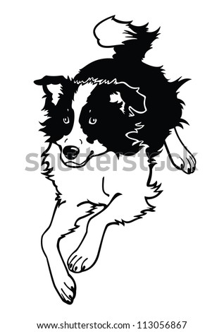 Running dog border collieblack white vector stock vector for Border collie coloring pages