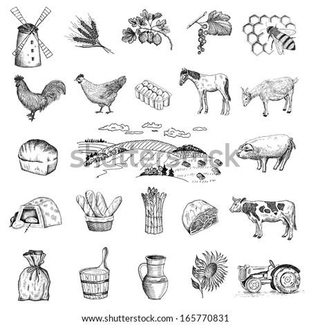 rural economy. set of vector sketches - stock vector