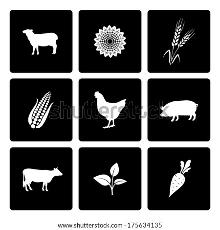 Rural icons set of cow chicken pig corn and wheat vector illustration - stock vector