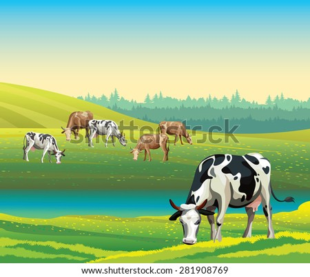 Rural summer landscape with cows and green meadow. Vector nature illustration. - stock vector
