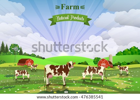 Rural Sunrise Landscape With Cows And Farm In Background. Organic And  Natural Food Concept.