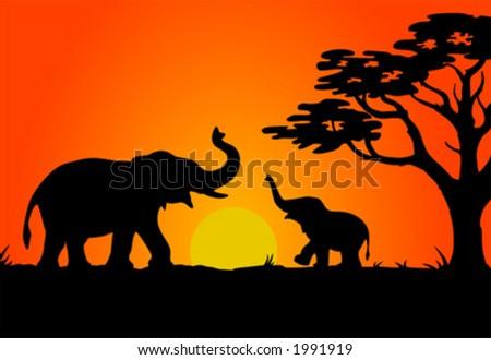 Safari sunset - stock vector