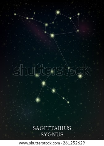 Sagittarius and Sygnus constellation - stock vector