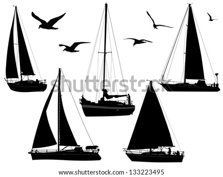 sail boats in silhouettes with birds - stock vector