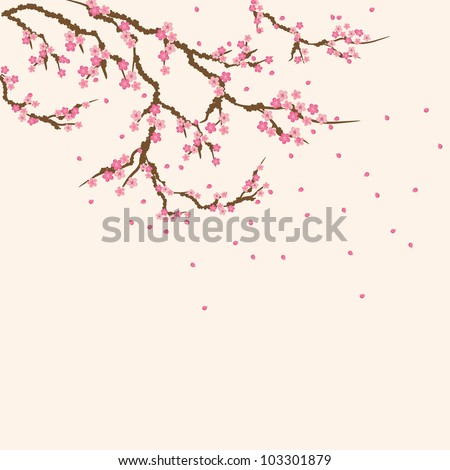 Sakura branch - stock vector