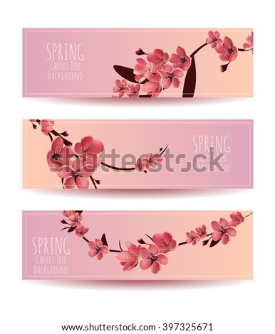 Sakura, Cherry Blossoming Tree Vector Background Illustration. Set of Beautiful Floral Banners, Greeting cards, Invitations, Backdrops, Vouchers . - stock vector