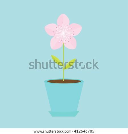 Sakura flower in the pot Japan blooming cherry blossom in flowerpot Blue background Template Flat design Vector illustration - stock vector