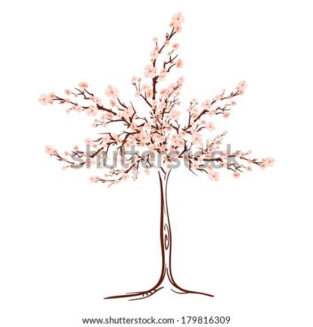 sakura tree spring blossom - stock vector