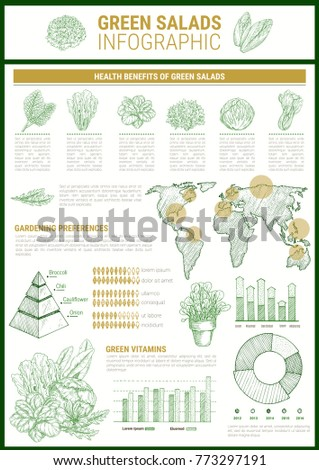 Salad greens infographic template leaf vegetable stock vector salad greens infographic template leaf vegetable health benefits chart and vitamin content graph cultivation pronofoot35fo Choice Image