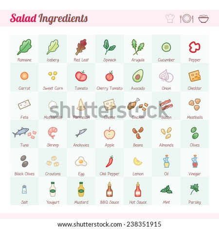 Salad recipe ingredients vector icons set with text - stock vector