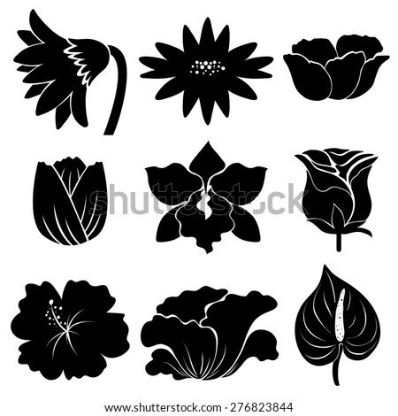 Sample different types flowers black color stock vector 2018 sample of different types of flowers in black color mightylinksfo