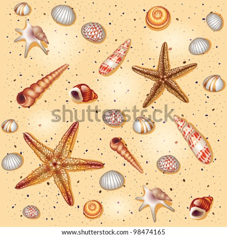 Sand shells pattern - vector illustration