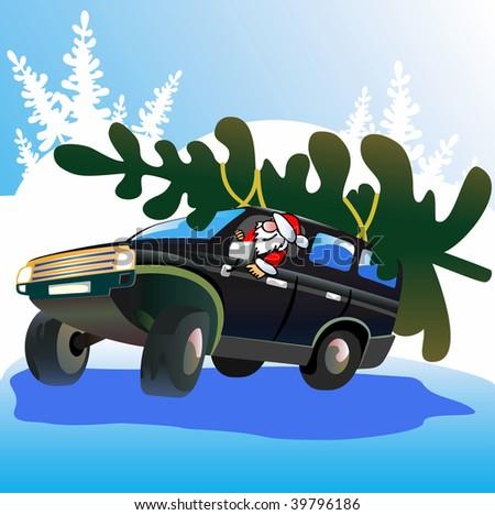 Santa Claus  drives Christmas tree. Vector illustration. - stock vector