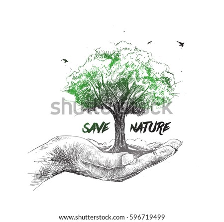 essay about save trees