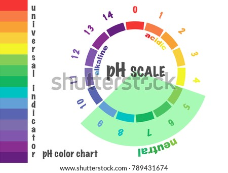 Scale Ph Value Acid Alkaline Solutions Stock Vector 789431674