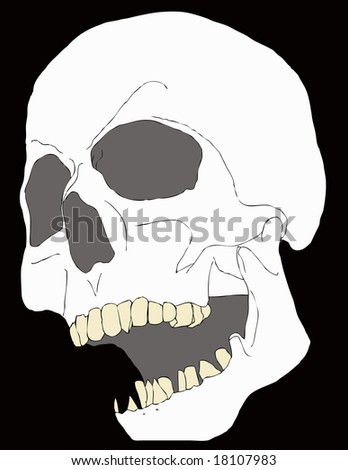 Scary Halloween Skull illustration on black background
