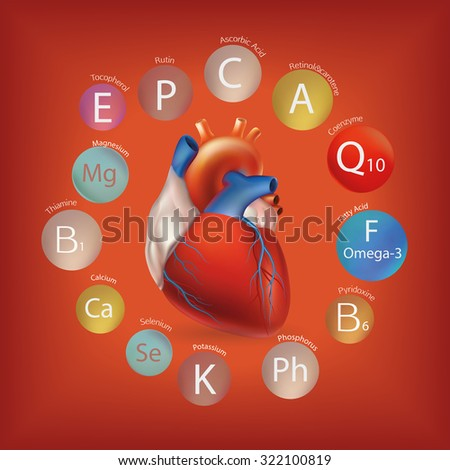 Schematic representation of the heart and the basic substances required for normal cardiac activity. Human health and nutrition.  Nutrition and Heart Health. - stock vector