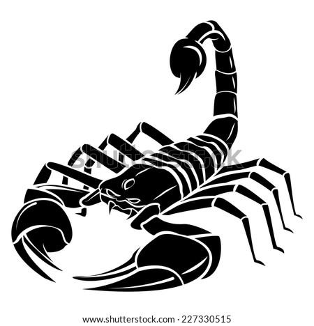 Scorpion Tattoo Stock ...