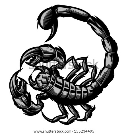 Scorpion representing Scorpio zodiac sign or just a sharp vector graphic for general use. Layered and easy to edit. - stock vector