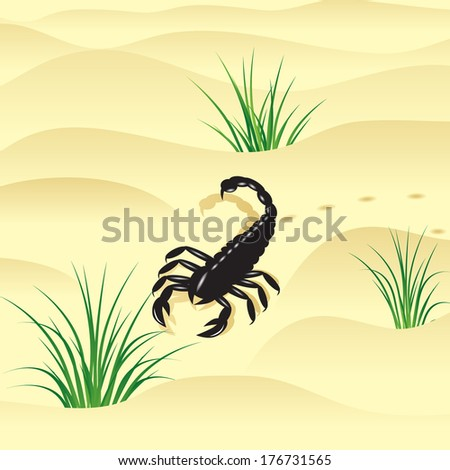 Scorpion. The wild nature, black scorpion with a sting on a tail and yellow sand to deserts. - stock vector