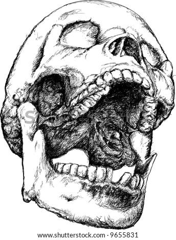 Screaming vector skull illustration - stock vector