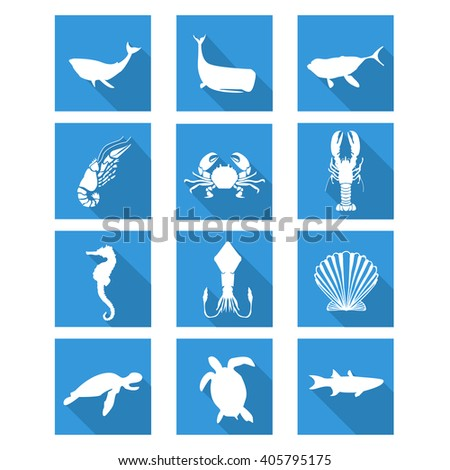 Sea animals flat icons set with whale, shrimp, crab, lobster, seahorse, squid, seashell, turtle and fish