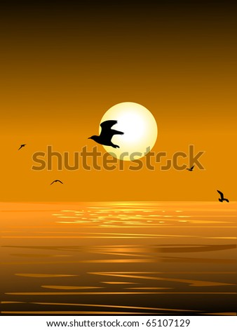 sea bird and the sunset - stock vector