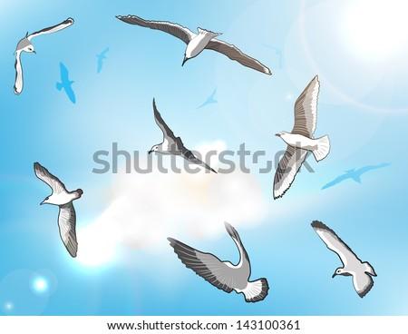 Sea gull set, vector illustration - stock vector