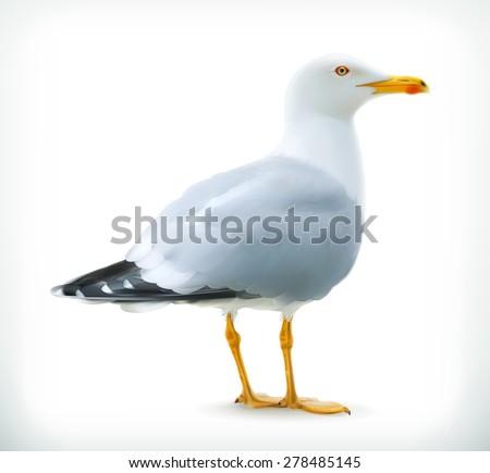 Sea gull, vector icon - stock vector