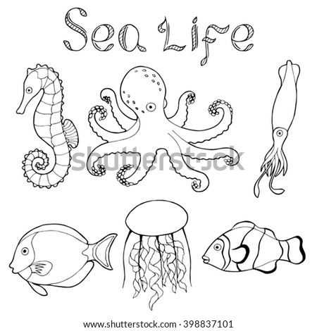 Octopus cartoon in addition Detailed Zentangle Mermaid 322006910 as well Image Marine Life Set 145388458 likewise Hand Drawn Sketch Seahorse Isolated White Background moreover Seahorse tattoo. on stock illustration doodle sketch seahorse black line sea marine