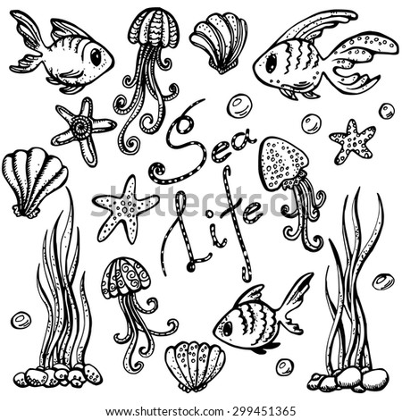 Sea Life Set Hand Drawn Doodles Black Line Art