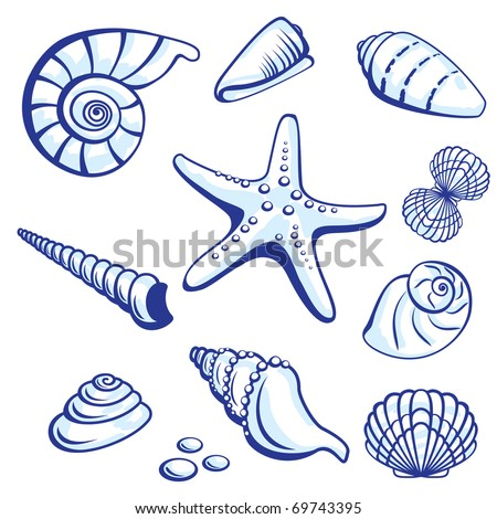 Sea Set From Starfishes and Cockleshells. Vector illustration on white background. - stock vector