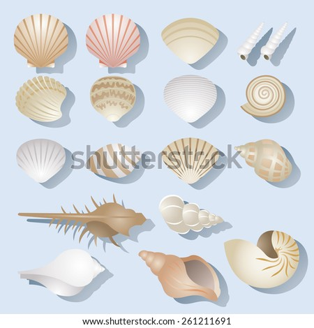 Sea Shell Objects Set - stock vector